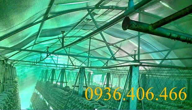 Hệ thống phun sương trồng nấm