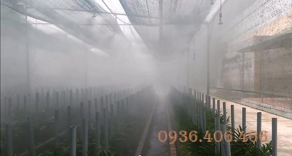 Ống nối chữ T PE phun sương nhựa